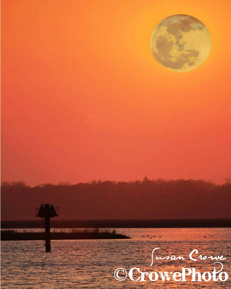 Moonrise over Great Egg Harbor Bay
